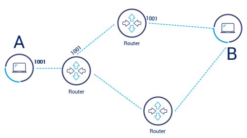 How does router work p2