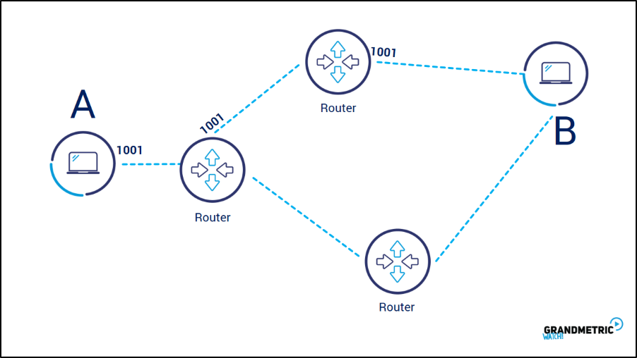 IP Packets Routers