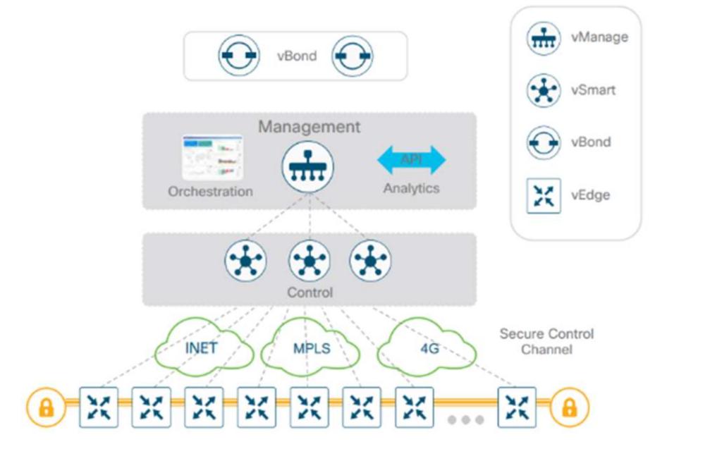 Cisco SD-WAN control data plane